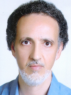 Seyed mahmoud Arab najafi